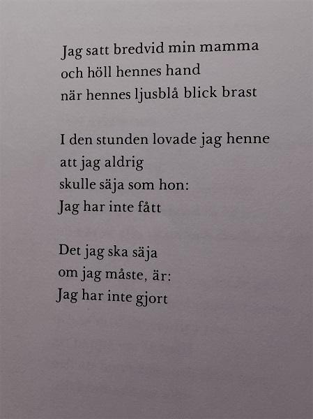 poesi för nybörjare