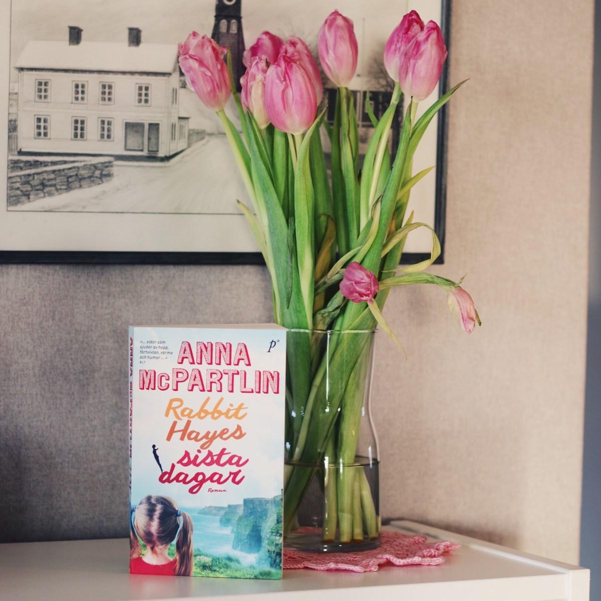 Rabbit Hayes sista dagar av Anna McPartlin