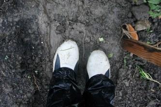 Gummistiefel sind die erste Wahl bei Schuhen