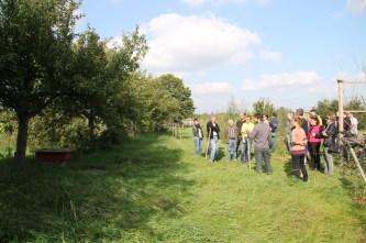Rundgang mit Besichtigung des BOKU-Gemeinschaftsgartens; Vorstellung des Arbeitsbereichs Bienen durch Dominik Chadid