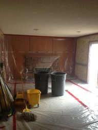Livingstone Fireplace Before picture, with brick surround