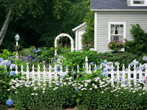 Fence Gardening Ideas For Winter Boldsky Com