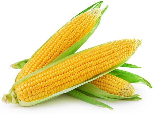 15 Health Benefits Of Eating Sweet Corn  Boldskycom