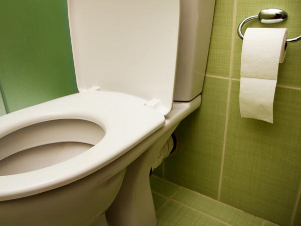 Ways To Remove Bad Smell From Bathroom  Boldskycom