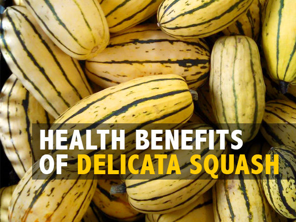 Health Benefits Of Delicata Squash