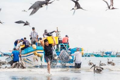 Puerto Lopez - Fish Market (24 of 40) May 15