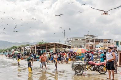 Puerto Lopez - Fish Market (28 of 40) May 15
