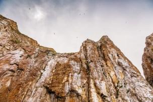 Galapagos - Leon Dormino (Kicker Rock) (43 of 61) June 15