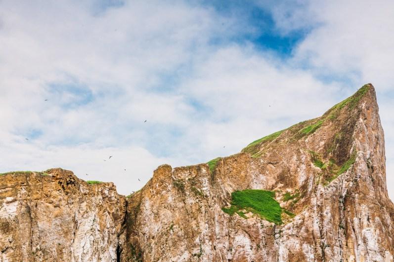 Galapagos - Leon Dormino (Kicker Rock) (48 of 61) June 15