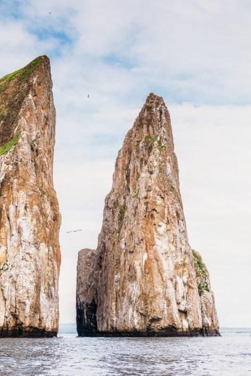Galapagos - Leon Dormino (Kicker Rock) (49 of 61) June 15