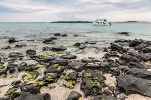 Galapagos - Leon Dormino (Kicker Rock) (54 of 61) June 15