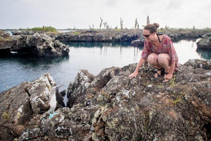 Galapagos - Los Tuneles (40 of 71) June 15