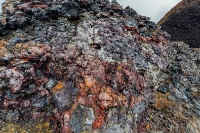 Galapagos - Sierra Negra Volcano (68 of 72) June 15