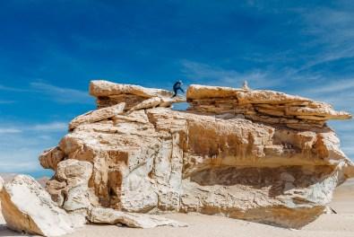 Salar de Uyuni - Bolivia -101- July 2015