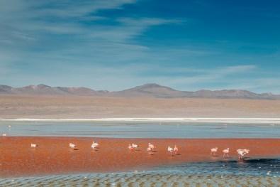 Salar de Uyuni - Bolivia -112- July 2015