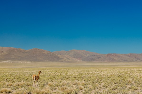Salar de Uyuni - Bolivia -151- July 2015