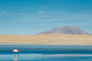 Salar de Uyuni - Bolivia -83- July 2015