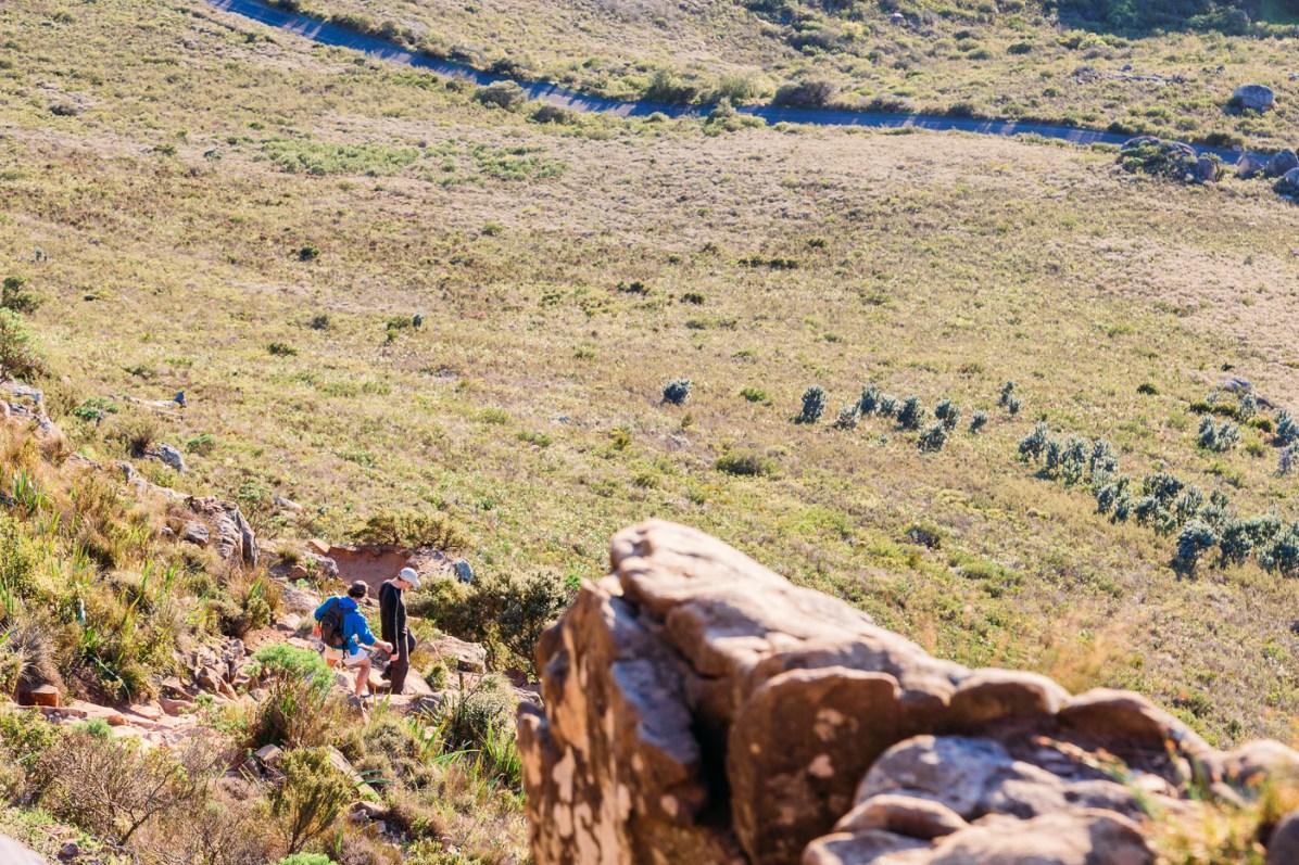 Lions Head Hike -22