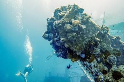 Diving Koh Kood - HTMS Chang Shipwreck -54