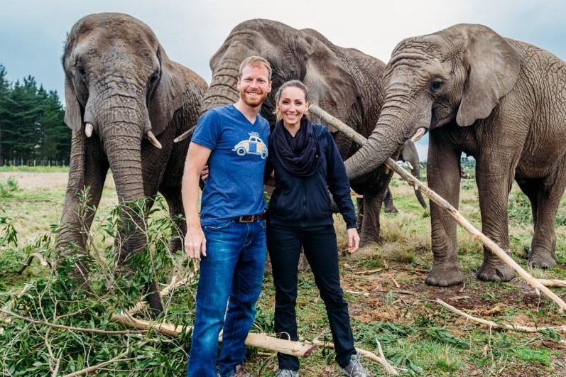 Elephant Park Knysna -14