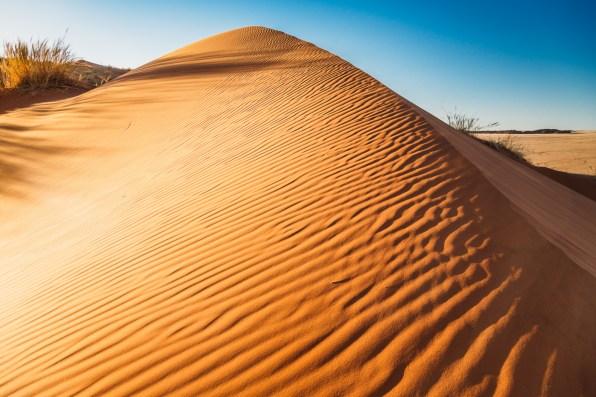 Sossusvlei Sand DunesNamibia -78-2
