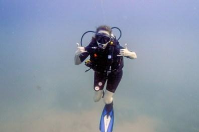 Koh Tao Scuba Diving Site South West Pinnacle -14