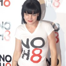 Pauley Perrette Reveals 'Multiple Physical Assaults' After 'NCIS' Exit