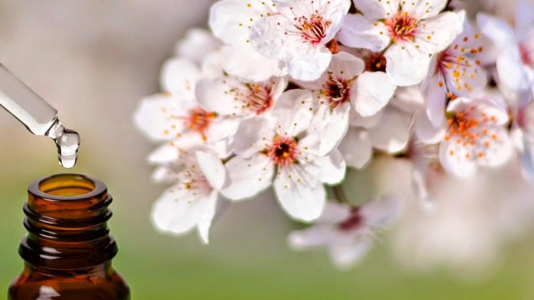 fiori di bach proprietà