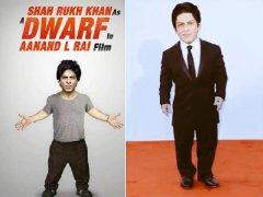 5-Reasons-Why-SRK-Dwarf-Superhit