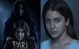 Pari-Movie-Budget-Story-Star-Cast