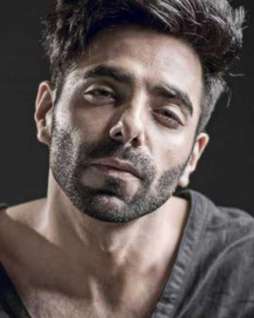 Aparshakti Khurana All Films Hit Flop Box Office Verdict