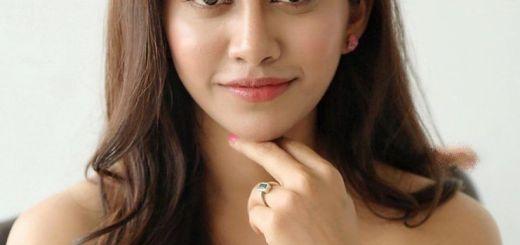 Nabha Natesh All Films Hit Flop Box Office Analysis