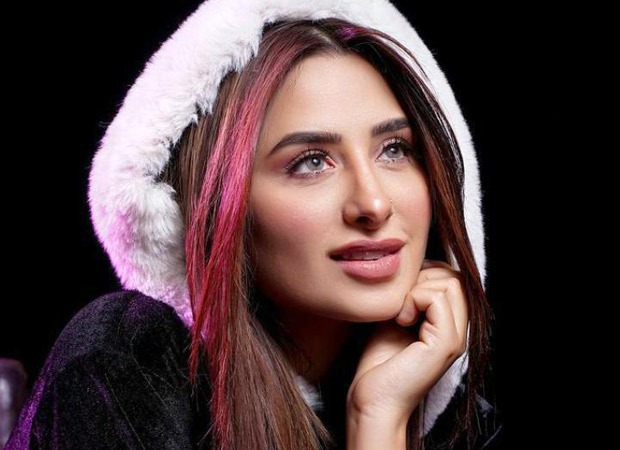 Bigg Boss 13 fame Mahira Sharma shares her new pictures on the gram, pictures went viral in no time