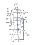 Tailor Made Measurements