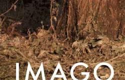 imago-festival-bologna
