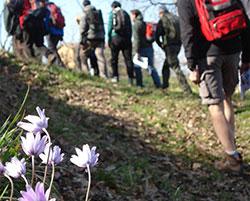 TrekkingTreno2015 post01