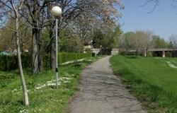 conoscere-alberi-parchi-bologna-Parco-dei-Noci-Ivan-Bisetti-list