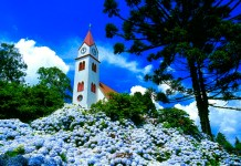 Gramado na Serra Gaúcha - Cidade tomada pelas hortênsias