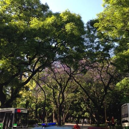Coisas incríveis para fazer em Buenos Aires