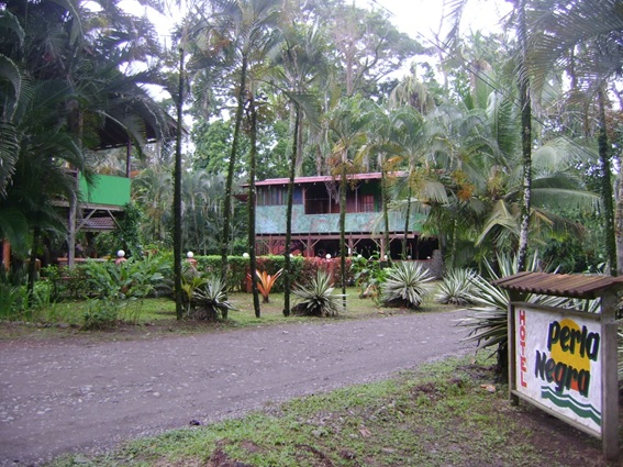 Hotel Perla Negra Puerto Viejo Costa Rica