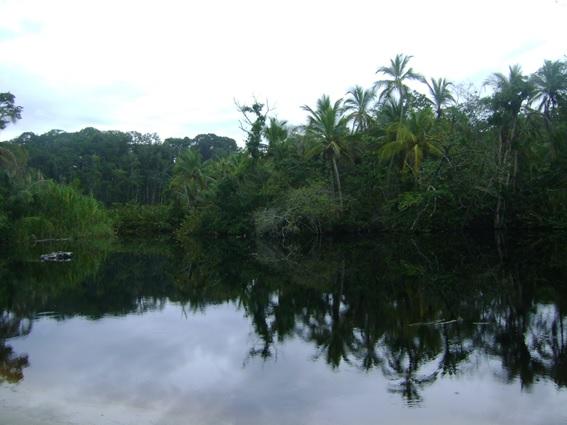 Parque Nacional Cahuita, Puerto Viejo, Costa Rica