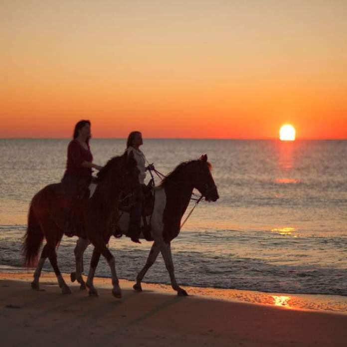 Passeio a cavalo em Maracaípe