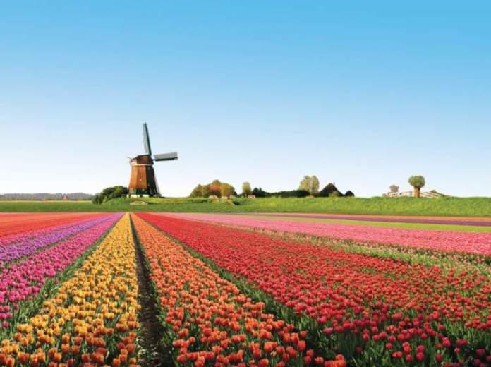 Amsterdã é um dos Melhores Destinos para Viajar em Março