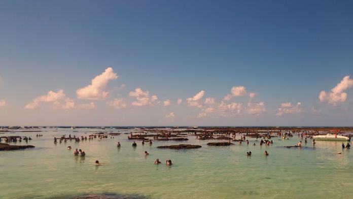 Turistas caminhando por piscinas naturais durante a maré baixa, nos recifes de corais de Maragogi, Alagoas.