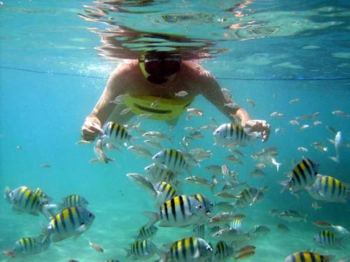 Curtir as piscinas naturais de Maracajaú
