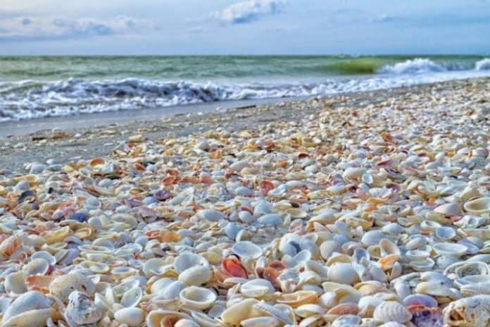 Ilhas Sanibel é uma das Melhores praias da Flórida