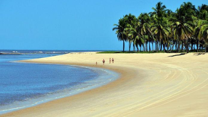 Conhecer Praia do Gunga é ter certeza que Alagoas é o Caribe brasileiro.