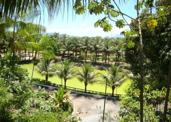 Parque Municipal da Fazendinha em Vitória