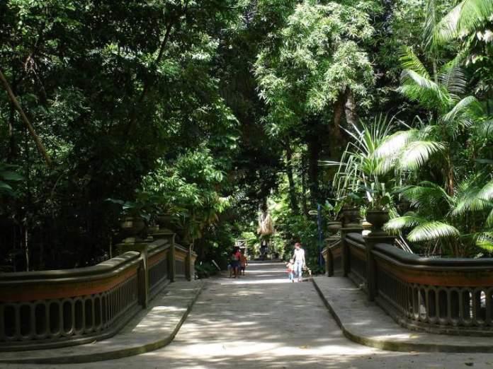 Visitar o Jardim Botânico é uma das opções de o que fazer em Belém