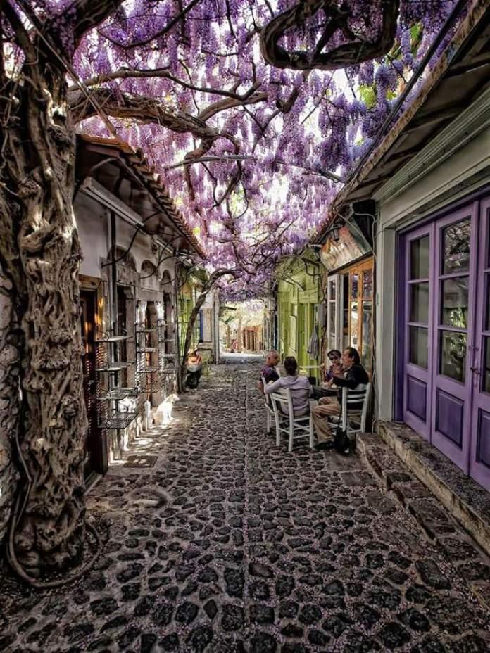 Lesbos na Grécia é um dos lugares que possui as mais belas ruas floridas do mundo
